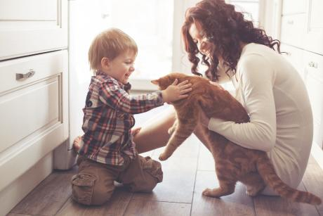 Green Homes Illinois, Mother with child and cat on kitchen floor, IL